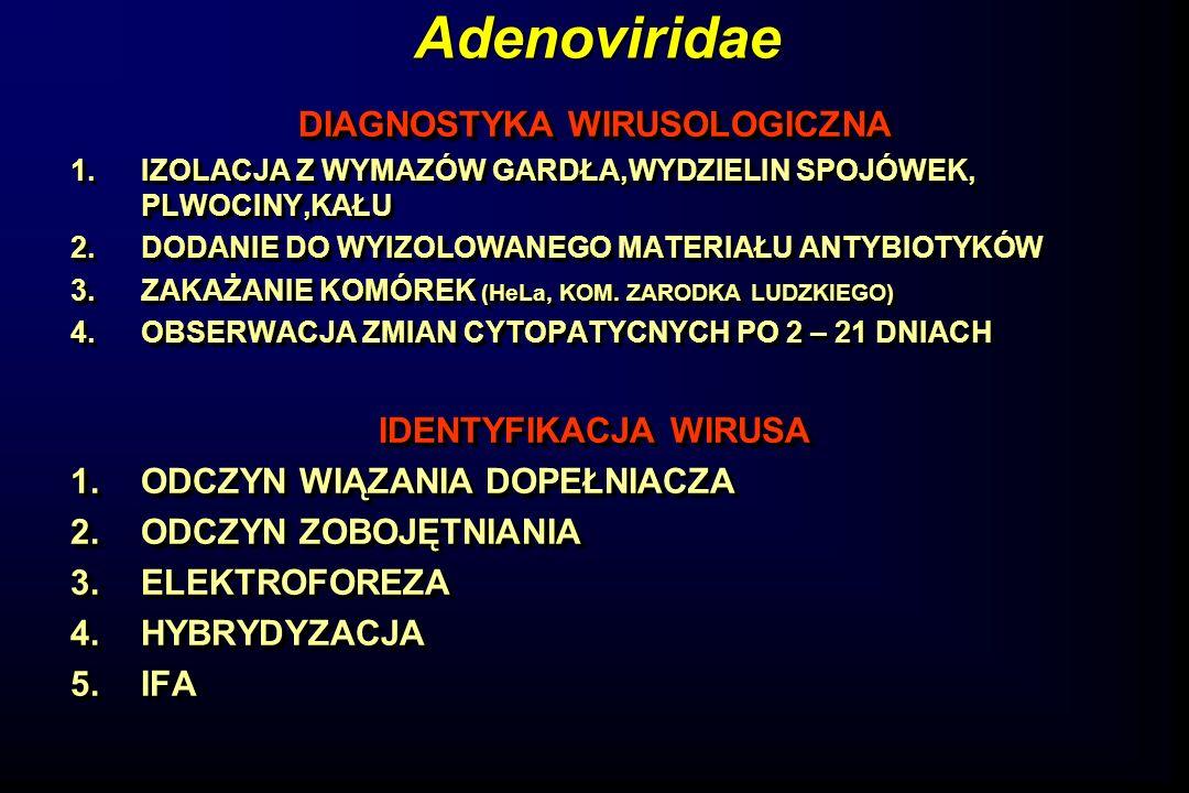 Adenoviridae DIAGNOSTYKA WIRUSOLOGICZNA 1.IZOLACJA Z WYMAZÓW GARDŁA,WYDZIELIN SPOJÓWEK, PLWOCINY,KAŁU 2.DODANIE DO WYIZOLOWANEGO MATERIAŁU ANTYBIOTYKÓ