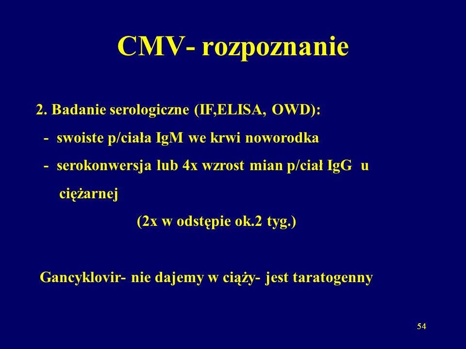 54 CMV- rozpoznanie 2.