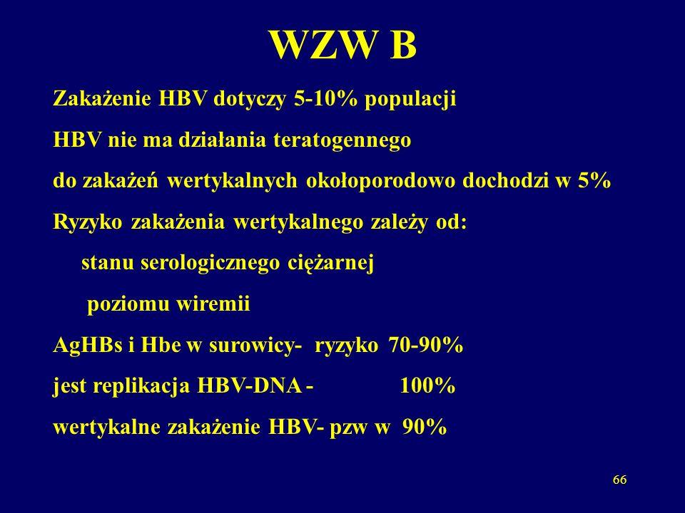 66 WZW B Zakażenie HBV dotyczy 5-10% populacji HBV nie ma działania teratogennego do zakażeń wertykalnych okołoporodowo dochodzi w 5% Ryzyko zakażenia wertykalnego zależy od: stanu serologicznego ciężarnej poziomu wiremii AgHBs i Hbe w surowicy- ryzyko 70-90% jest replikacja HBV-DNA - 100% wertykalne zakażenie HBV- pzw w 90%