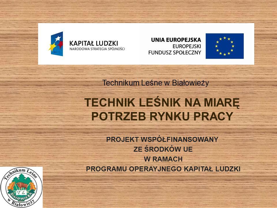 TECHNIK LEŚNIK NA MIARĘ POTRZEB RYNKU PRACY PROJEKT WSPÓŁFINANSOWANY ZE ŚRODKÓW UE W RAMACH PROGRAMU OPERAYJNEGO KAPITAŁ LUDZKI Technikum Leśne w Białowieży