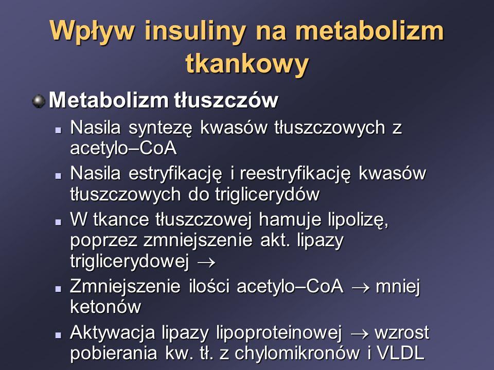 Wpływ insuliny na metabolizm tkankowy Metabolizm tłuszczów Nasila syntezę kwasów tłuszczowych z acetylo–CoA Nasila syntezę kwasów tłuszczowych z acetylo–CoA Nasila estryfikację i reestryfikację kwasów tłuszczowych do triglicerydów Nasila estryfikację i reestryfikację kwasów tłuszczowych do triglicerydów W tkance tłuszczowej hamuje lipolizę, poprzez zmniejszenie akt.