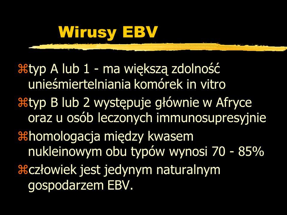 Wirusy EBV ztyp A lub 1 - ma większą zdolność unieśmiertelniania komórek in vitro ztyp B lub 2 występuje głównie w Afryce oraz u osób leczonych immuno