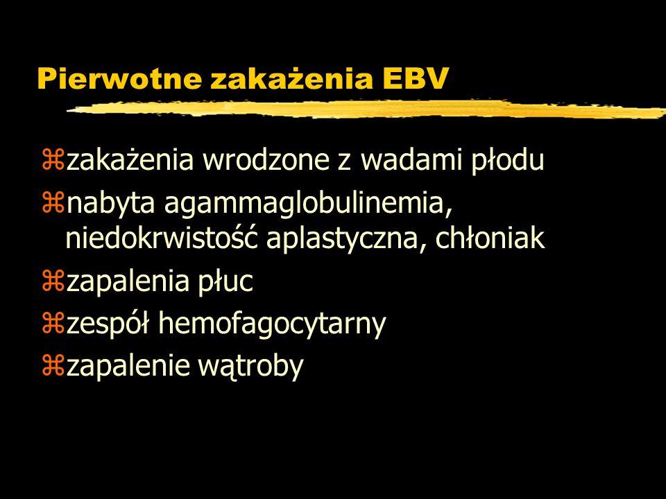 Pierwotne zakażenia EBV zzakażenia wrodzone z wadami płodu znabyta agammaglobulinemia, niedokrwistość aplastyczna, chłoniak zzapalenia płuc zzespół he