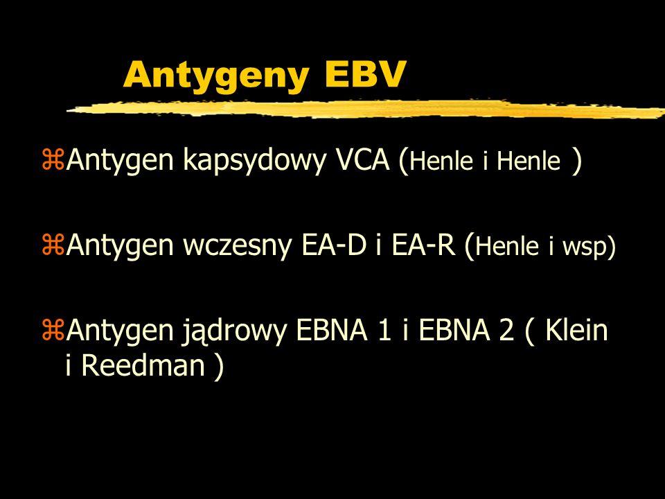Antygeny EBV zAntygen kapsydowy VCA ( Henle i Henle ) zAntygen wczesny EA-D i EA-R ( Henle i wsp) zAntygen jądrowy EBNA 1 i EBNA 2 ( Klein i Reedman )