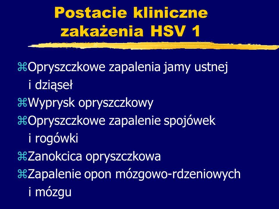 Postacie kliniczne zakażenia HSV 1 zOpryszczkowe zapalenia jamy ustnej i dziąseł zWyprysk opryszczkowy zOpryszczkowe zapalenie spojówek i rogówki zZan