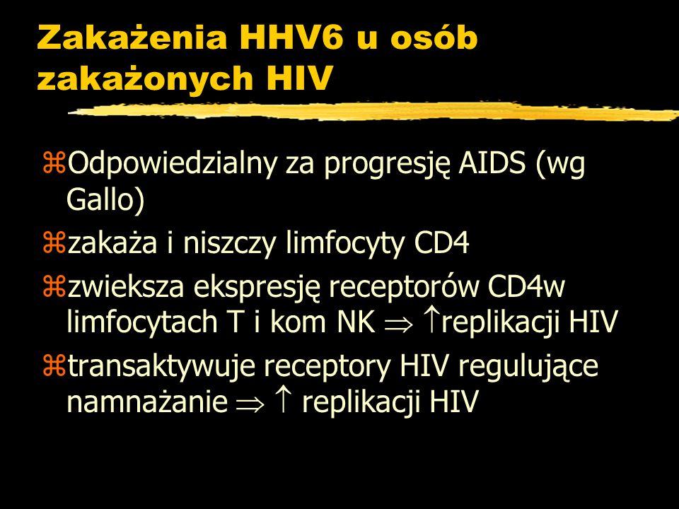 Zakażenia HHV6 u osób zakażonych HIV zOdpowiedzialny za progresję AIDS (wg Gallo) zzakaża i niszczy limfocyty CD4 zzwieksza ekspresję receptorów CD4w