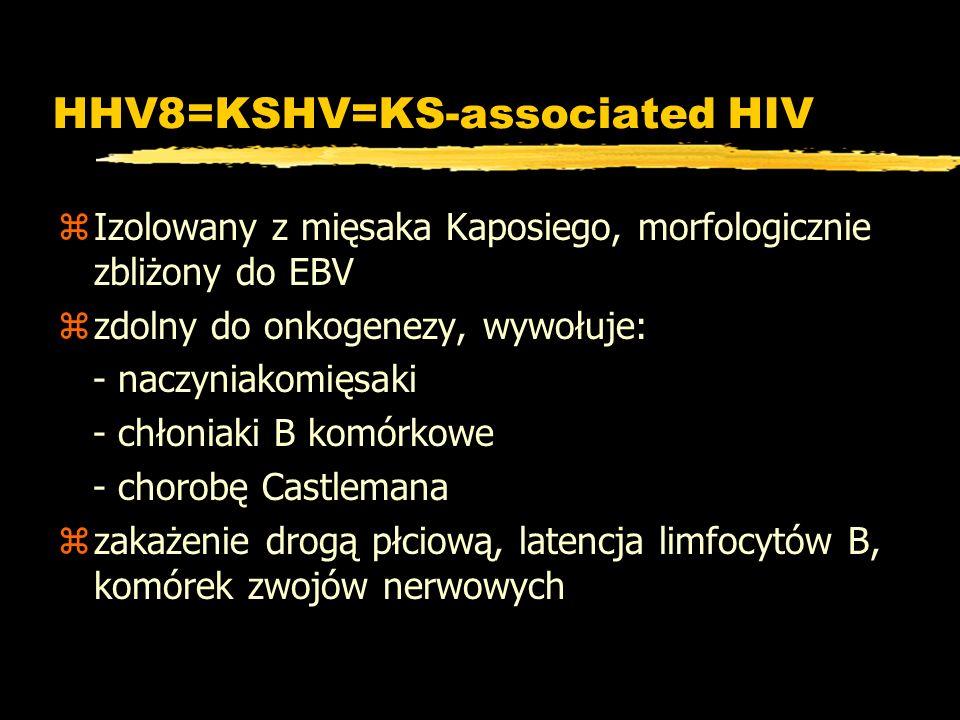 HHV8=KSHV=KS-associated HIV zIzolowany z mięsaka Kaposiego, morfologicznie zbliżony do EBV zzdolny do onkogenezy, wywołuje: - naczyniakomięsaki - chło