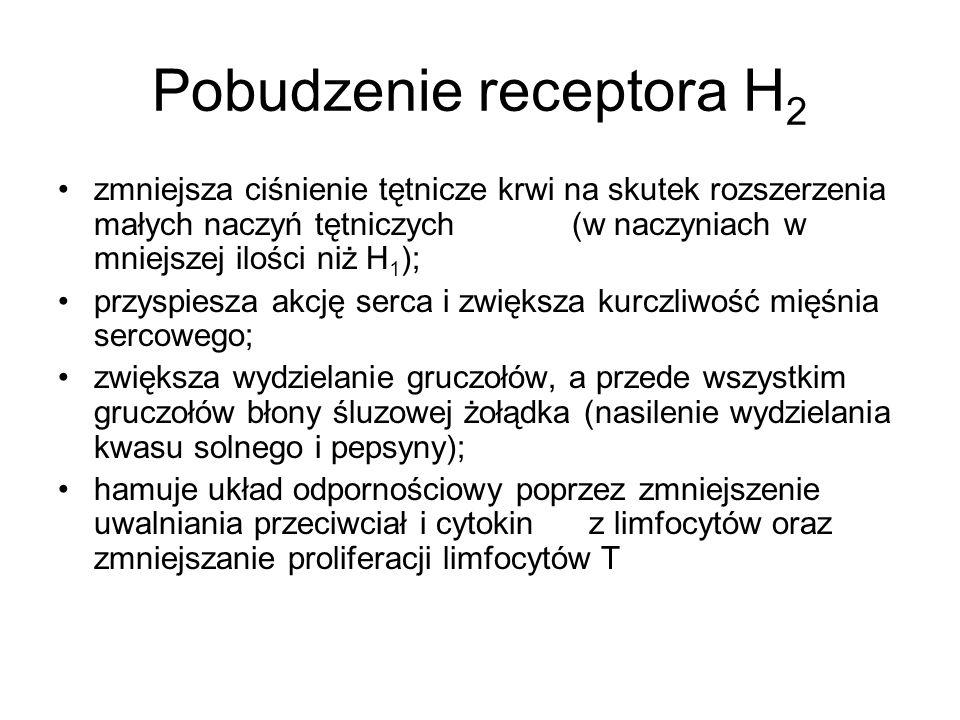Pobudzenie receptora H 2 zmniejsza ciśnienie tętnicze krwi na skutek rozszerzenia małych naczyń tętniczych (w naczyniach w mniejszej ilości niż H 1 );
