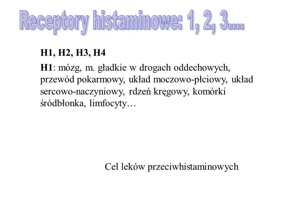 H1, H2, H3, H4 H1: mózg, m.