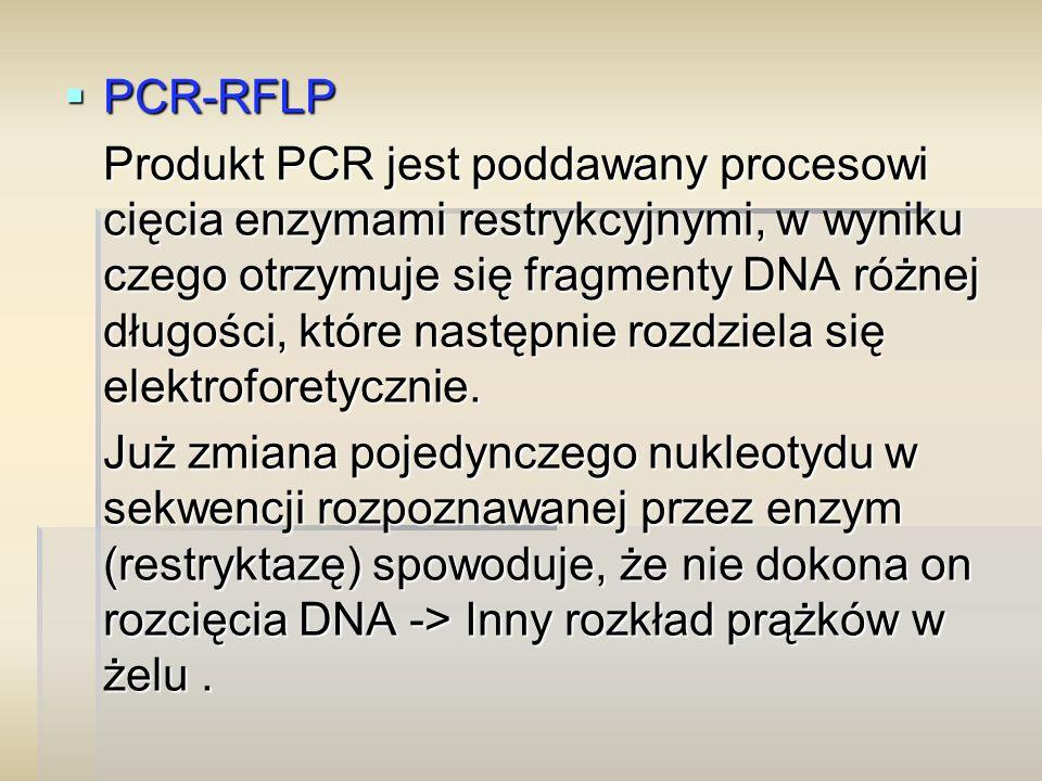  PCR-RFLP Produkt PCR jest poddawany procesowi cięcia enzymami restrykcyjnymi, w wyniku czego otrzymuje się fragmenty DNA różnej długości, które następnie rozdziela się elektroforetycznie.