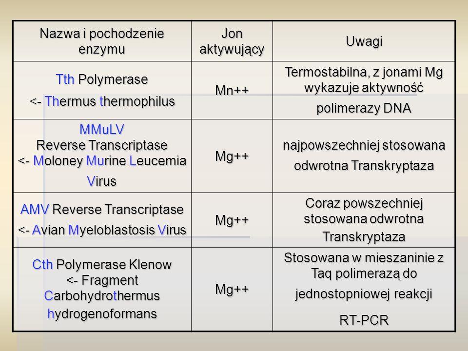 Nazwa i pochodzenie enzymu Jon aktywujący Uwagi Tth Polymerase <- Thermus thermophilus Mn++ Termostabilna, z jonami Mg wykazuje aktywność polimerazy DNA MMuLV Reverse Transcriptase <- Moloney Murine Leucemia Virus Mg++ najpowszechniej stosowana odwrotna Transkryptaza AMV Reverse Transcriptase <- Avian Myeloblastosis Virus Mg++ Coraz powszechniej stosowana odwrotna Transkryptaza Cth Polymerase Klenow <- Fragment Carbohydrothermus hydrogenoformans Mg++ Stosowana w mieszaninie z Taq polimerazą do jednostopniowej reakcji RT-PCR