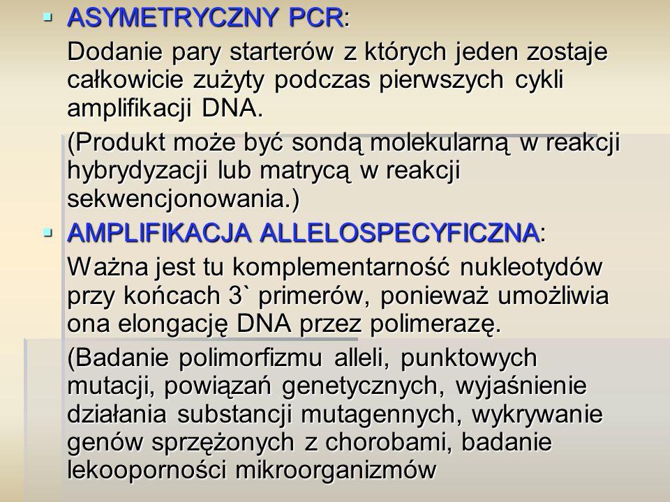  ASYMETRYCZNY PCR: Dodanie pary starterów z których jeden zostaje całkowicie zużyty podczas pierwszych cykli amplifikacji DNA. (Produkt może być sond