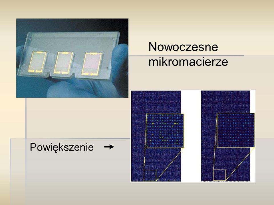 Nowoczesne mikromacierze Powiększenie 