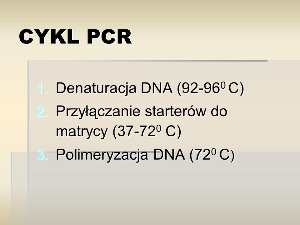 DENATURACJA (> 90 0 C)