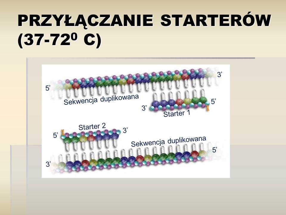 PRZYŁĄCZANIE STARTERÓW (37-72 0 C) Sekwencja duplikowana Starter 1 Starter 2 5' 3' 5' 3' 5' 3'