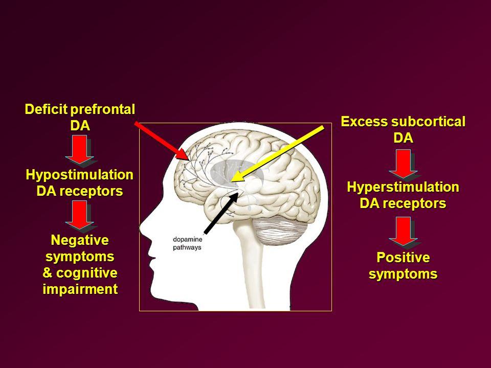 Deficit prefrontal DAHypostimulation DA receptors Negative symptoms & cognitive impairment Excess subcortical DAHyperstimulation DA receptors Positive