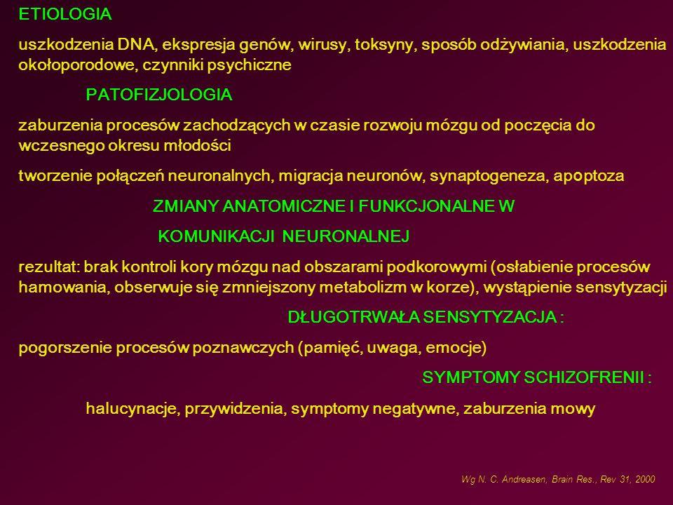 ETIOLOGIA uszkodzenia DNA, ekspresja genów, wirusy, toksyny, sposób odżywiania, uszkodzenia okołoporodowe, czynniki psychiczne PATOFIZJOLOGIA zaburzenia procesów zachodzących w czasie rozwoju mózgu od poczęcia do wczesnego okresu młodości tworzenie połączeń neuronalnych, migracja neuronów, synaptogeneza, ap o ptoza ZMIANY ANATOMICZNE I FUNKCJONALNE W KOMUNIKACJI NEURONALNEJ rezultat: brak kontroli kory mózgu nad obszarami podkorowymi (osłabienie procesów hamowania, obserwuje się zmniejszony metabolizm w korze), wystąpienie sensytyzacji DŁUGOTRWAŁA SENSYTYZACJA : pogorszenie procesów poznawczych (pamięć, uwaga, emocje) SYMPTOMY SCHIZOFRENII : halucynacje, przywidzenia, symptomy negatywne, zaburzenia mowy Wg N.