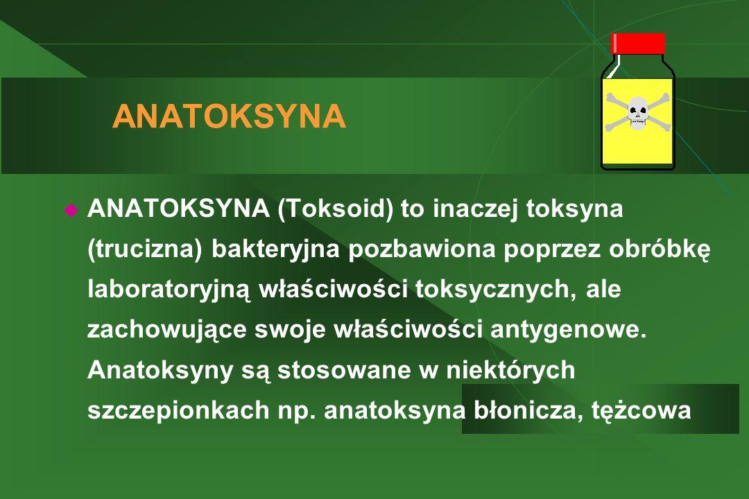 ANATOKSYNA  ANATOKSYNA (Toksoid) to inaczej toksyna (trucizna) bakteryjna pozbawiona poprzez obróbkę laboratoryjną właściwości toksycznych, ale zacho