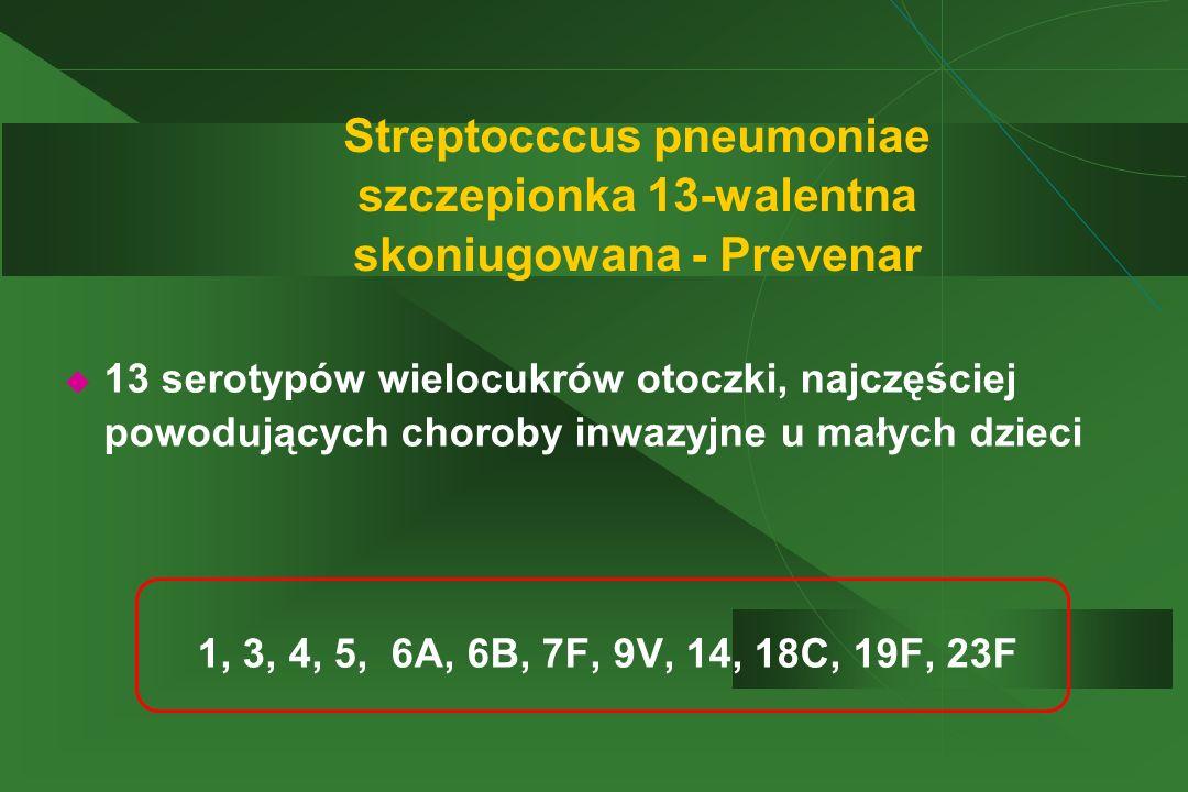 Streptocccus pneumoniae szczepionka 13-walentna skoniugowana - Prevenar  13 serotypów wielocukrów otoczki, najczęściej powodujących choroby inwazyjne