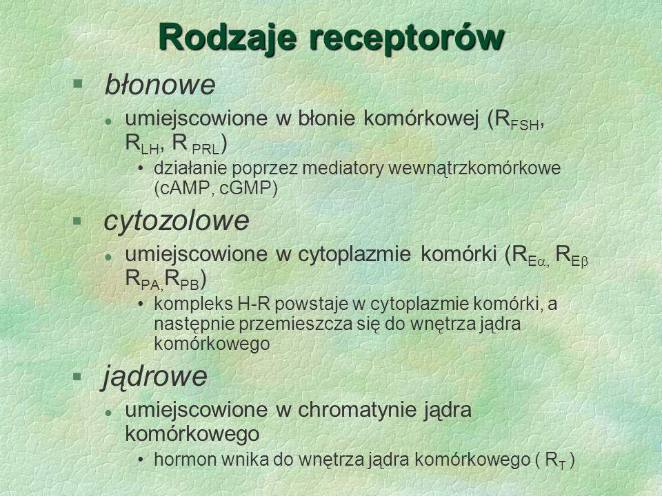 Rodzaje receptorów § błonowe l umiejscowione w błonie komórkowej (R FSH, R LH, R PRL ) działanie poprzez mediatory wewnątrzkomórkowe (cAMP, cGMP) § cy
