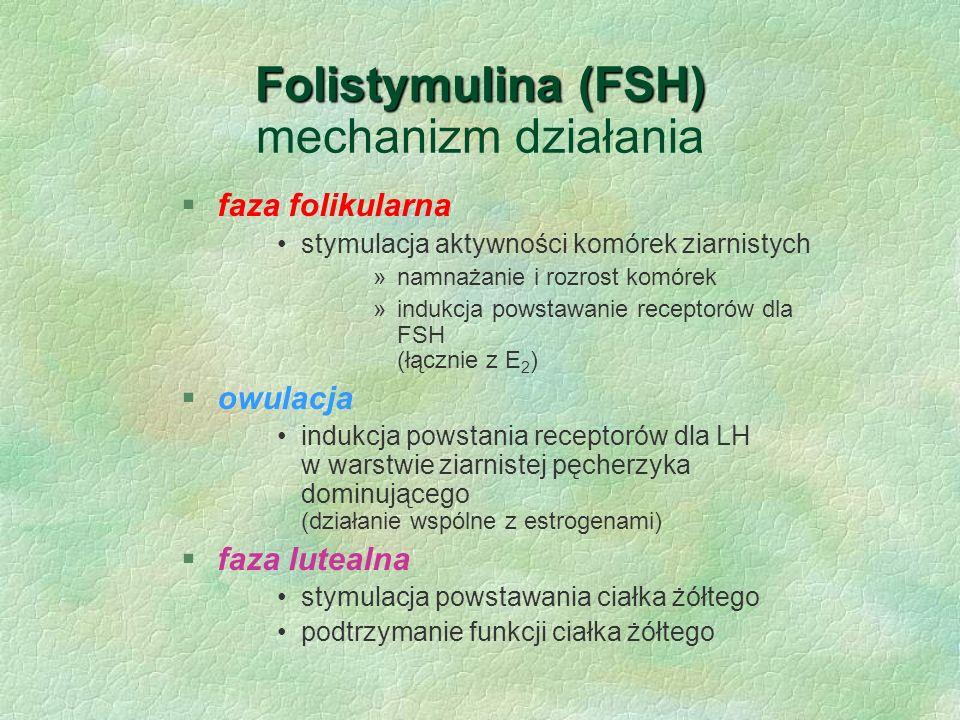 Folistymulina (FSH) Folistymulina (FSH) mechanizm działania §faza folikularna stymulacja aktywności komórek ziarnistych »namnażanie i rozrost komórek