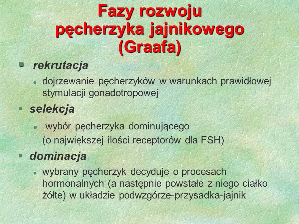 Fazy rozwoju pęcherzyka jajnikowego (Graafa) § § rekrutacja l dojrzewanie pęcherzyków w warunkach prawidłowej stymulacji gonadotropowej §selekcja l wy