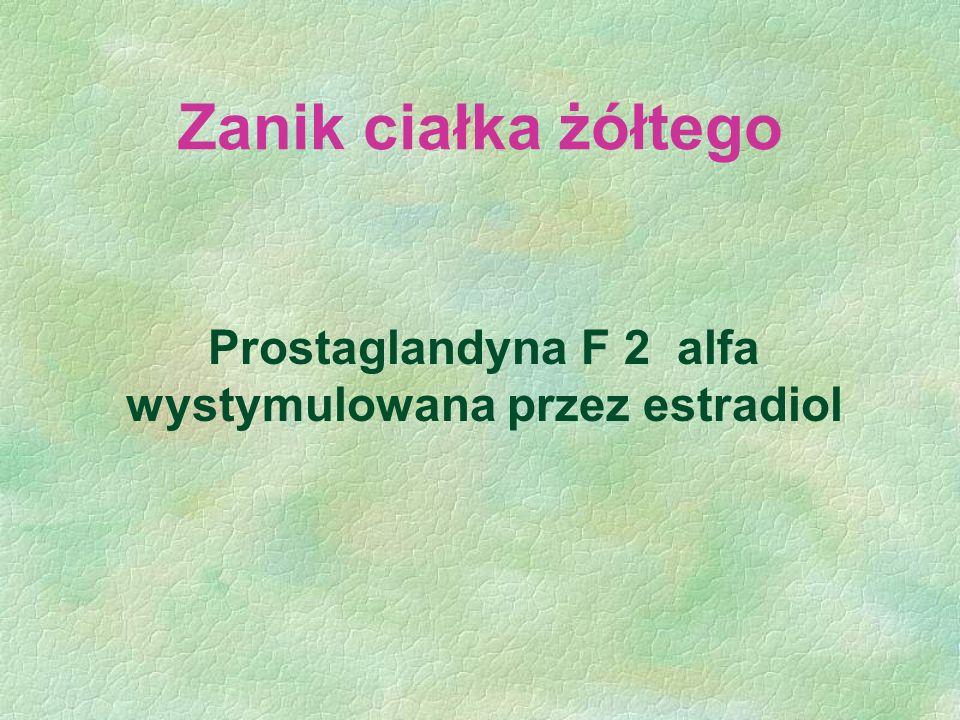 Zanik ciałka żółtego Prostaglandyna F 2 alfa wystymulowana przez estradiol