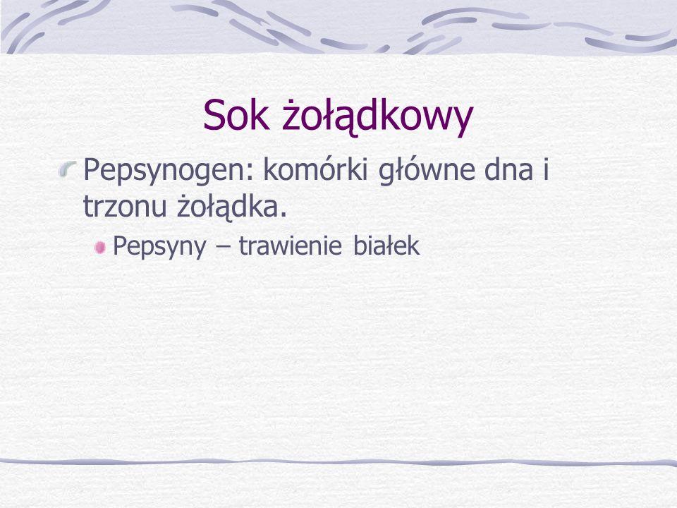Sok żołądkowy Pepsynogen: komórki główne dna i trzonu żołądka. Pepsyny – trawienie białek