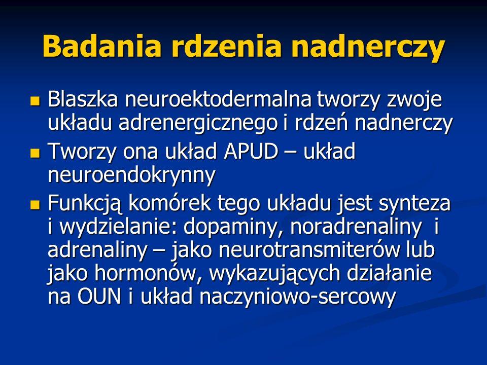 Badania rdzenia nadnerczy Blaszka neuroektodermalna tworzy zwoje układu adrenergicznego i rdzeń nadnerczy Blaszka neuroektodermalna tworzy zwoje układ