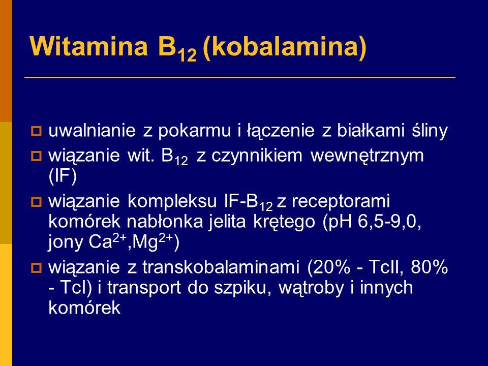 Witamina B 12 (kobalamina)  uwalnianie z pokarmu i łączenie z białkami śliny  wiązanie wit.