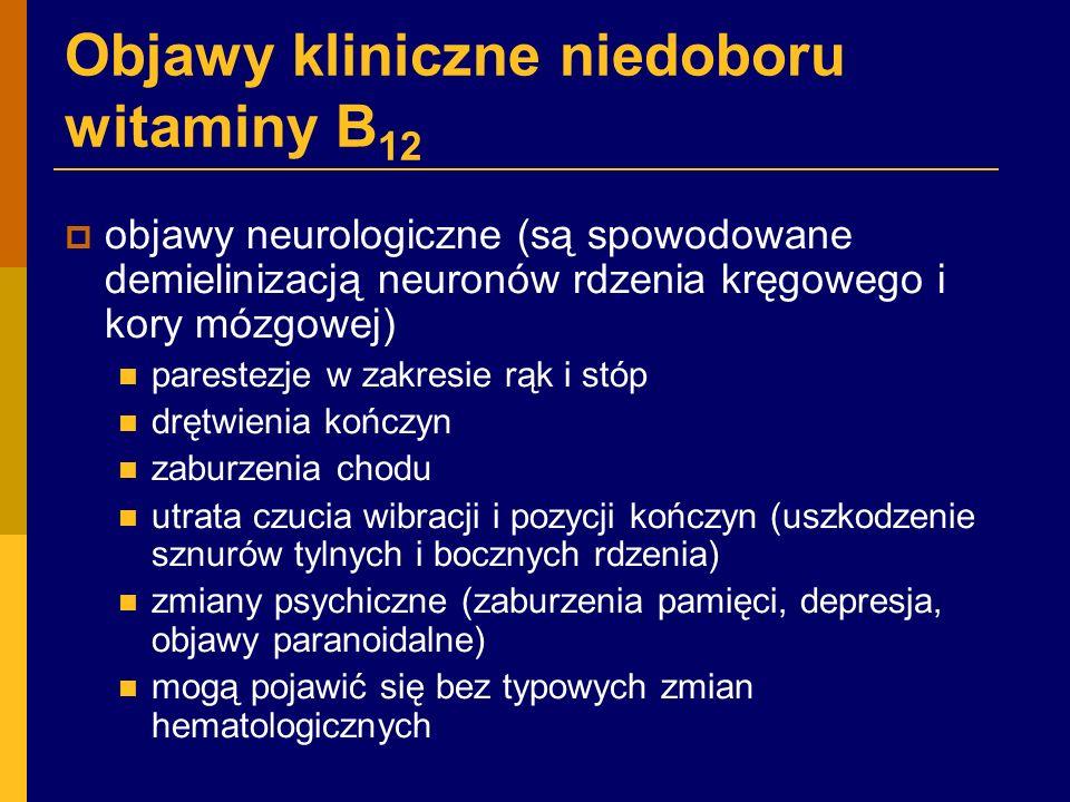 Objawy kliniczne niedoboru witaminy B 12  objawy neurologiczne (są spowodowane demielinizacją neuronów rdzenia kręgowego i kory mózgowej) parestezje w zakresie rąk i stóp drętwienia kończyn zaburzenia chodu utrata czucia wibracji i pozycji kończyn (uszkodzenie sznurów tylnych i bocznych rdzenia) zmiany psychiczne (zaburzenia pamięci, depresja, objawy paranoidalne) mogą pojawić się bez typowych zmian hematologicznych