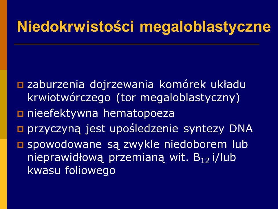 Niedokrwistości megaloblastyczne  zaburzenia dojrzewania komórek układu krwiotwórczego (tor megaloblastyczny)  nieefektywna hematopoeza  przyczyną jest upośledzenie syntezy DNA  spowodowane są zwykle niedoborem lub nieprawidłową przemianą wit.