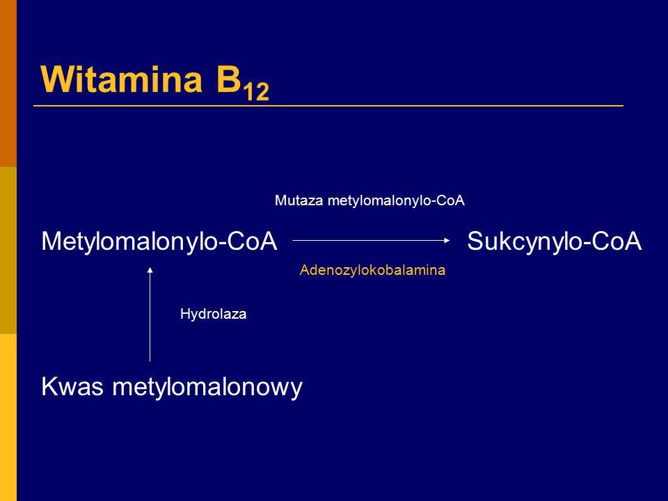 Witamina B 12 (kobalamina)  główne źródło – mięso, wątroba, ryby, mleko, jaja  zawartość w przeciętnej diecie – 7-10µg  dzienne zapotrzebowanie – 2,5-5µg  wchłanianie z diety - 1-5µg  zawartość w organizmie – 2-5mg