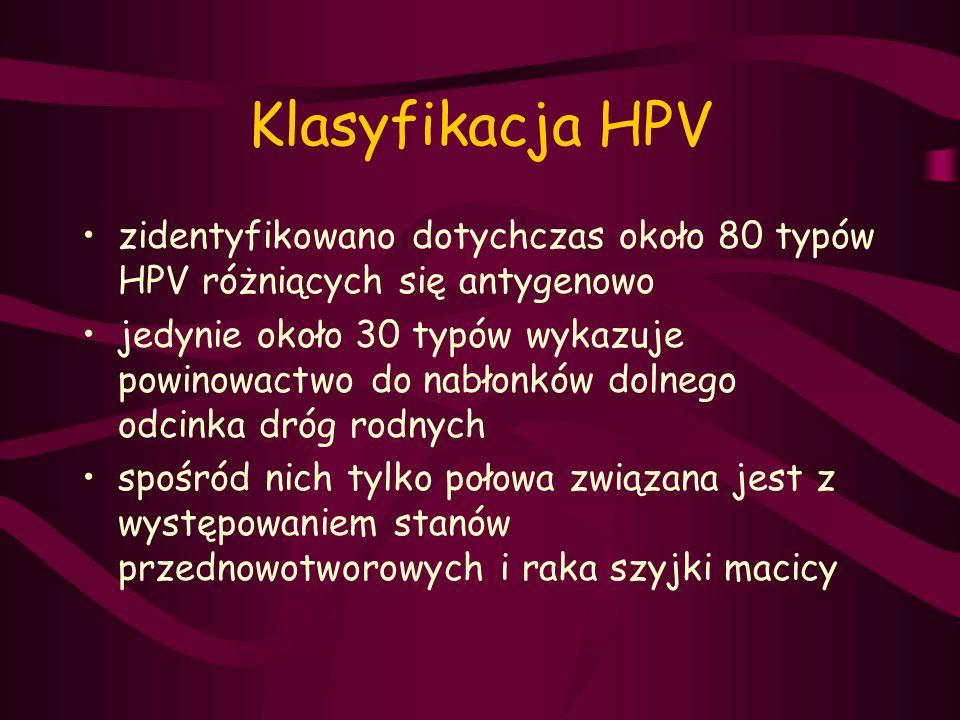 Klasyfikacja HPV zidentyfikowano dotychczas około 80 typów HPV różniących się antygenowo jedynie około 30 typów wykazuje powinowactwo do nabłonków dol