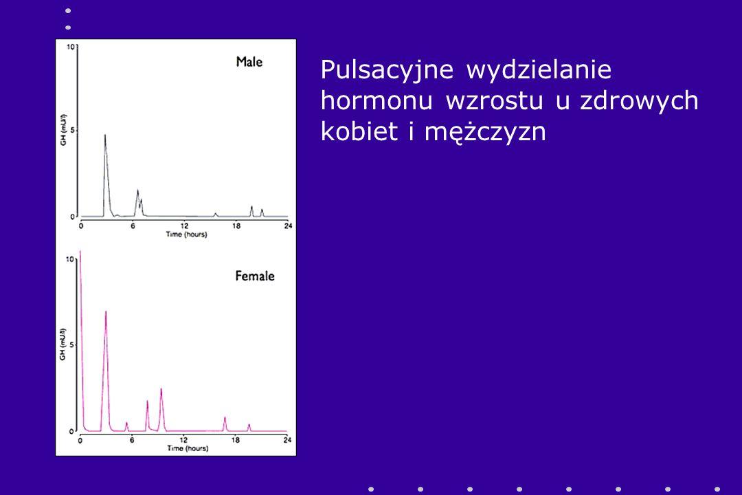 Pulsacyjne wydzielanie hormonu wzrostu u zdrowych kobiet i mężczyzn