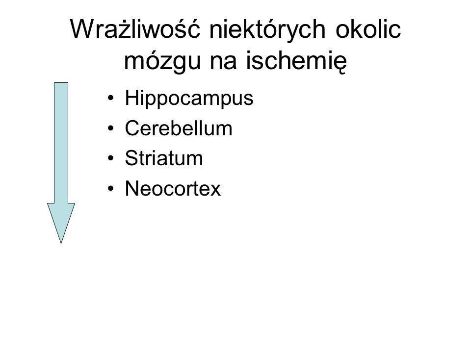 Wrażliwość niektórych okolic mózgu na ischemię Hippocampus Cerebellum Striatum Neocortex