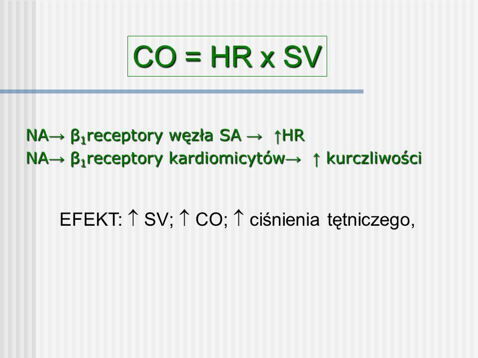NA → β 1 receptory węzła SA → ↑ HR NA → β 1 receptory kardiomicytów → ↑ kurczliwości CO = HR x SV EFEKT:  SV;  CO;  ciśnienia tętniczego,