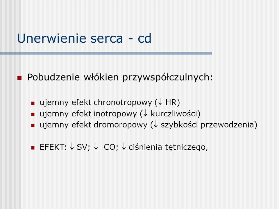 Unerwienie serca - cd Pobudzenie włókien przywspółczulnych: ujemny efekt chronotropowy ( HR) ujemny efekt inotropowy ( kurczliwości) ujemny efekt dromoropowy ( szybkości przewodzenia) EFEKT:  SV;  CO;  ciśnienia tętniczego,