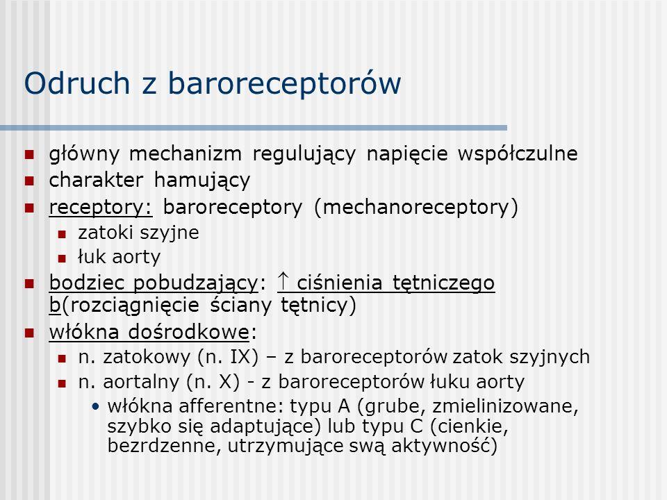 Odruch z baroreceptorów główny mechanizm regulujący napięcie współczulne charakter hamujący receptory: baroreceptory (mechanoreceptory) zatoki szyjne łuk aorty bodziec pobudzający:  ciśnienia tętniczego b(rozciągnięcie ściany tętnicy) włókna dośrodkowe: n.