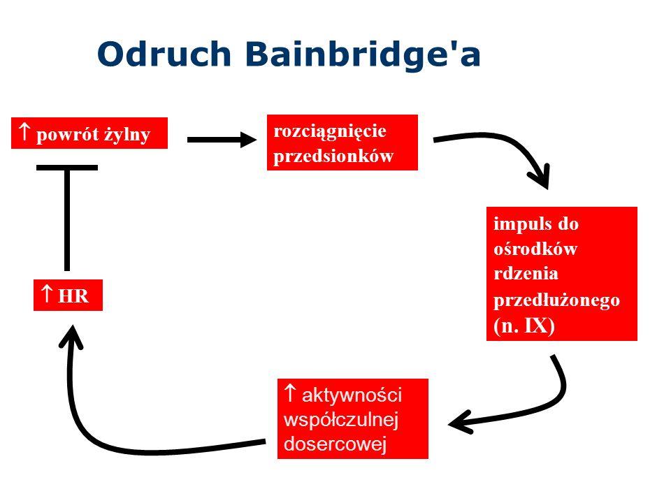 Odruch Bainbridge a  powrót żylny rozciągnięcie przedsionków impuls do ośrodków rdzenia przedłużonego (n.