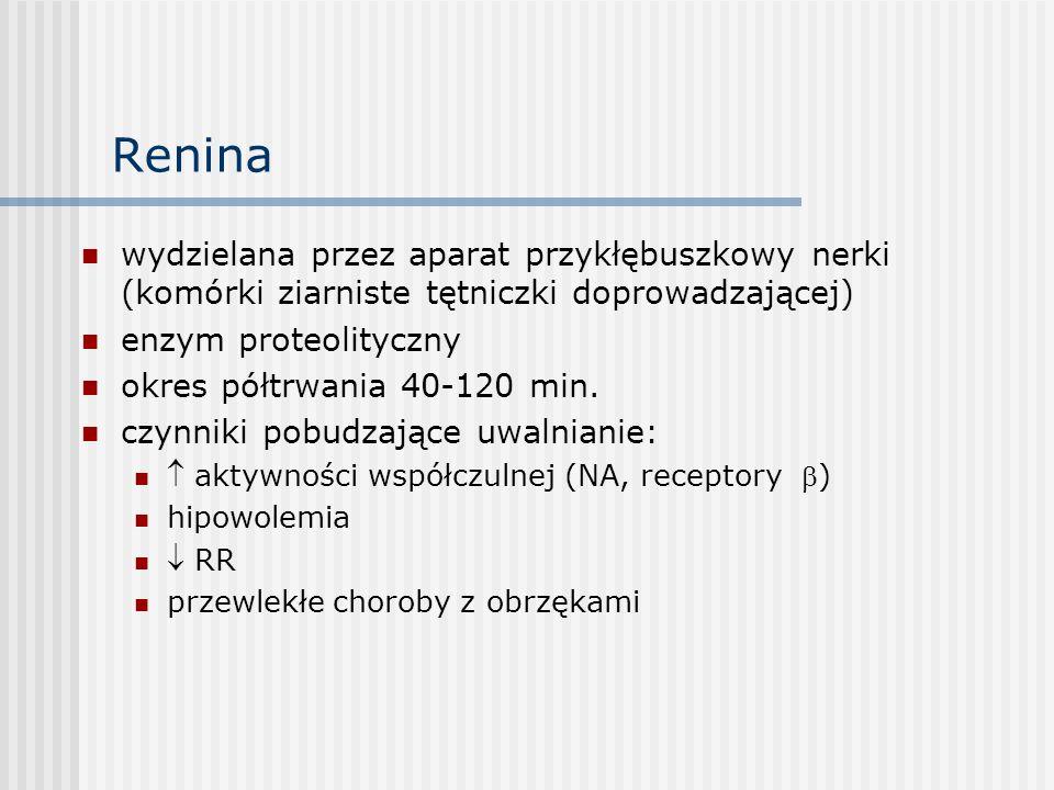 Renina wydzielana przez aparat przykłębuszkowy nerki (komórki ziarniste tętniczki doprowadzającej) enzym proteolityczny okres półtrwania 40-120 min.