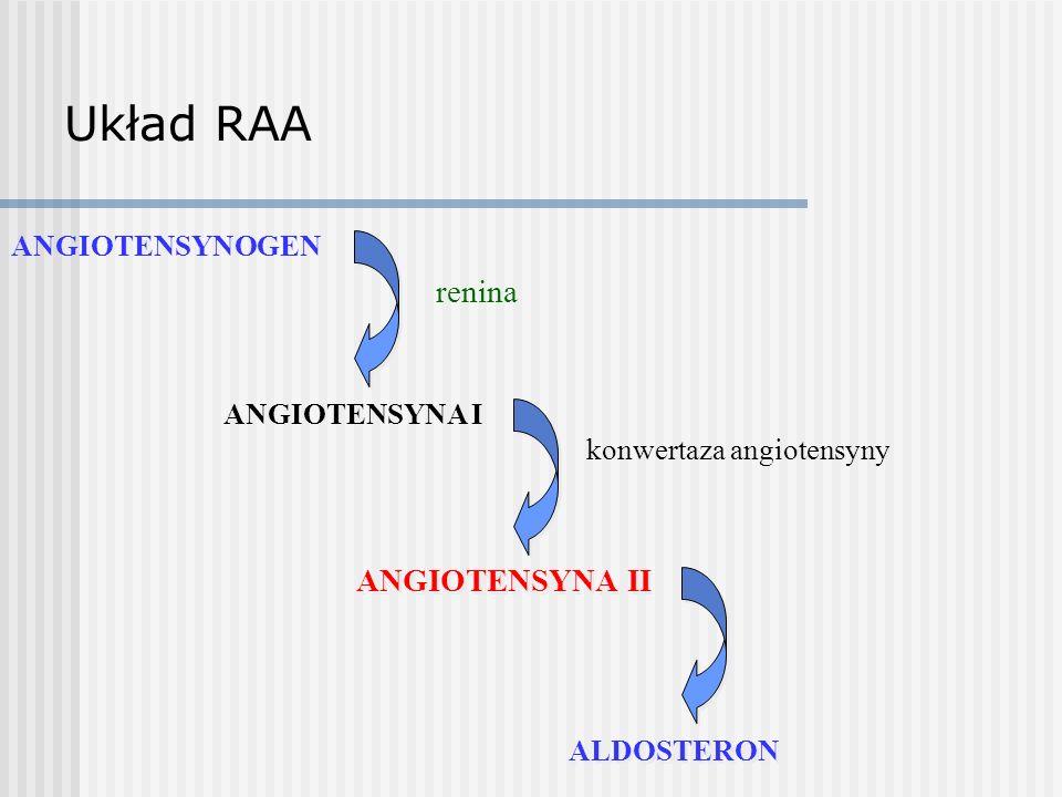 Układ RAA renina ANGIOTENSYNA I konwertaza angiotensyny ANGIOTENSYNA II ANGIOTENSYNOGEN ALDOSTERON
