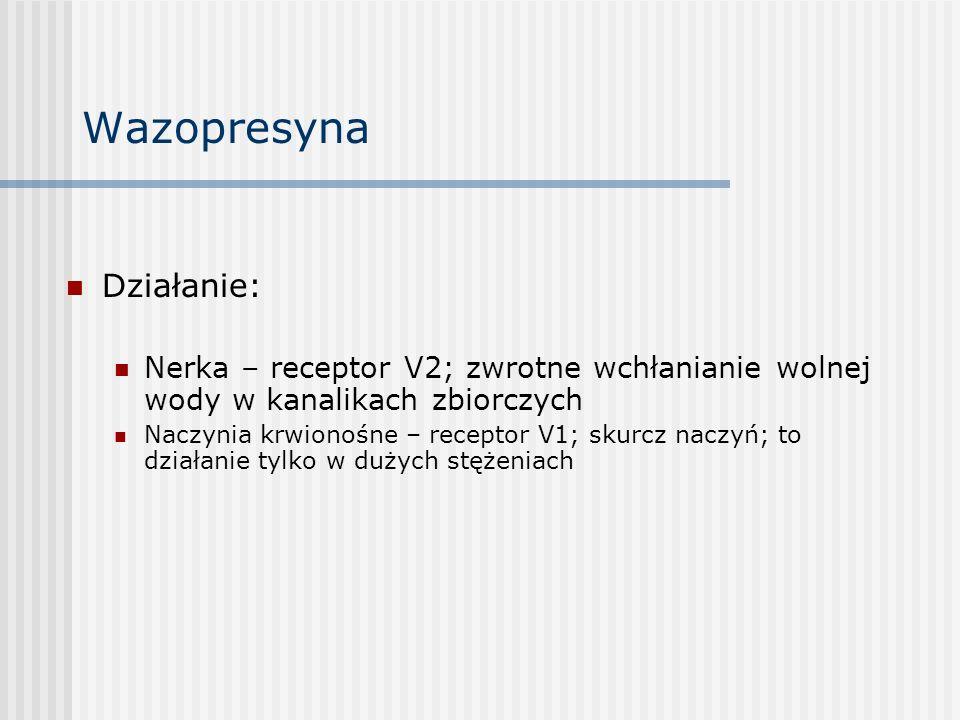 Działanie: Nerka – receptor V2; zwrotne wchłanianie wolnej wody w kanalikach zbiorczych Naczynia krwionośne – receptor V1; skurcz naczyń; to działanie tylko w dużych stężeniach Wazopresyna