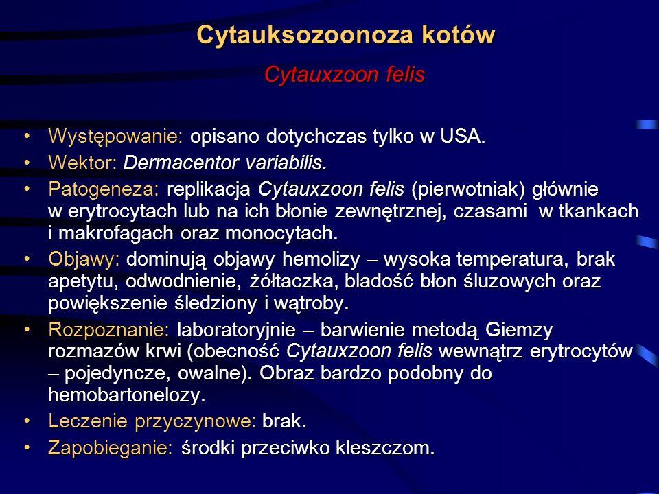 Cytauksozoonoza kotów Cytauxzoon felis Występowanie: opisano dotychczas tylko w USA.Występowanie: opisano dotychczas tylko w USA. Wektor: Dermacentor