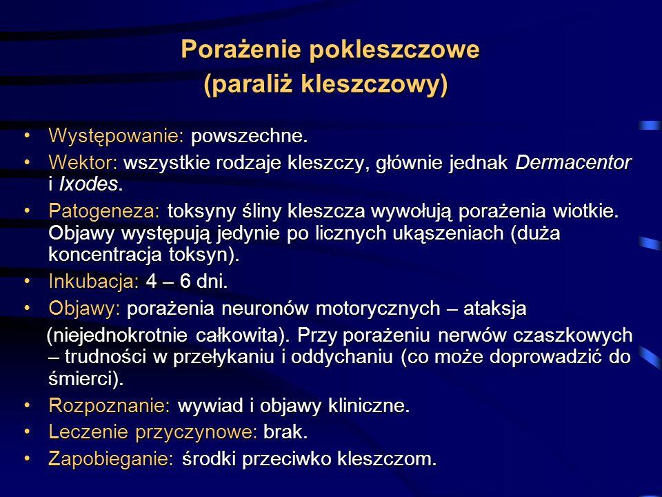 Porażenie pokleszczowe (paraliż kleszczowy) Występowanie: powszechne.Występowanie: powszechne. Wektor: wszystkie rodzaje kleszczy, głównie jednak Derm