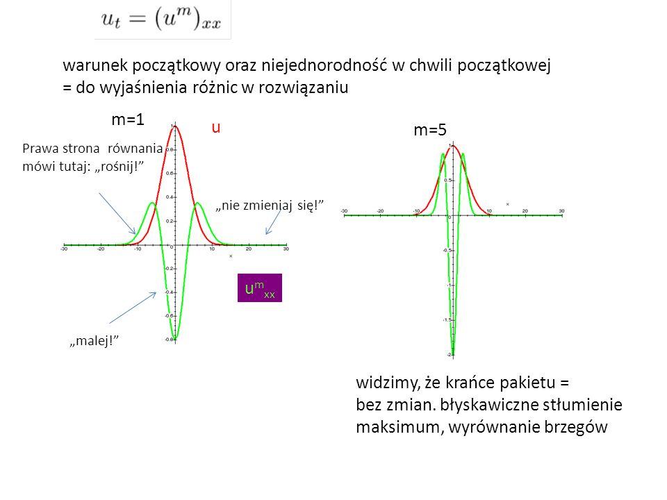 warunek początkowy oraz niejednorodność w chwili początkowej = do wyjaśnienia różnic w rozwiązaniu widzimy, że krańce pakietu = bez zmian. błyskawiczn