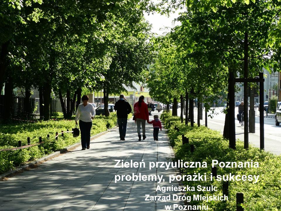 Zarząd Dróg Miejskich w Poznaniu jest administratorem zieleni przyulicznej : z tego: - 310 ha terenów zieleni w stałej pielęgnacji - 150 ha w interwencyjnej pielęgnacji - 30 tysięcy starych drzew - 18 tysięcy młodych drzew - 400 tysięcy krzewów - Byliny, pnącza, rośliny cebulowe, mała architektura na ponad 2 tysiącach ulic i skwerów