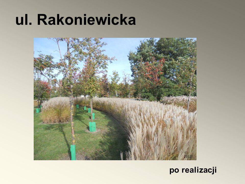 po realizacji ul. Rakoniewicka