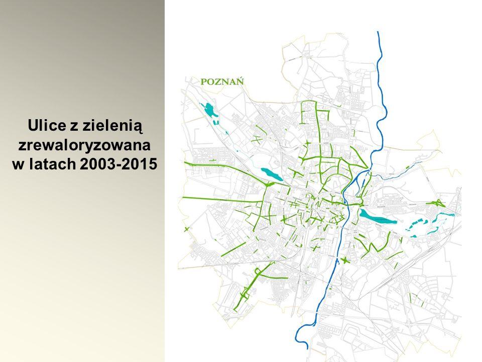 Ulice z zielenią zrewaloryzowana w latach 2003-2015