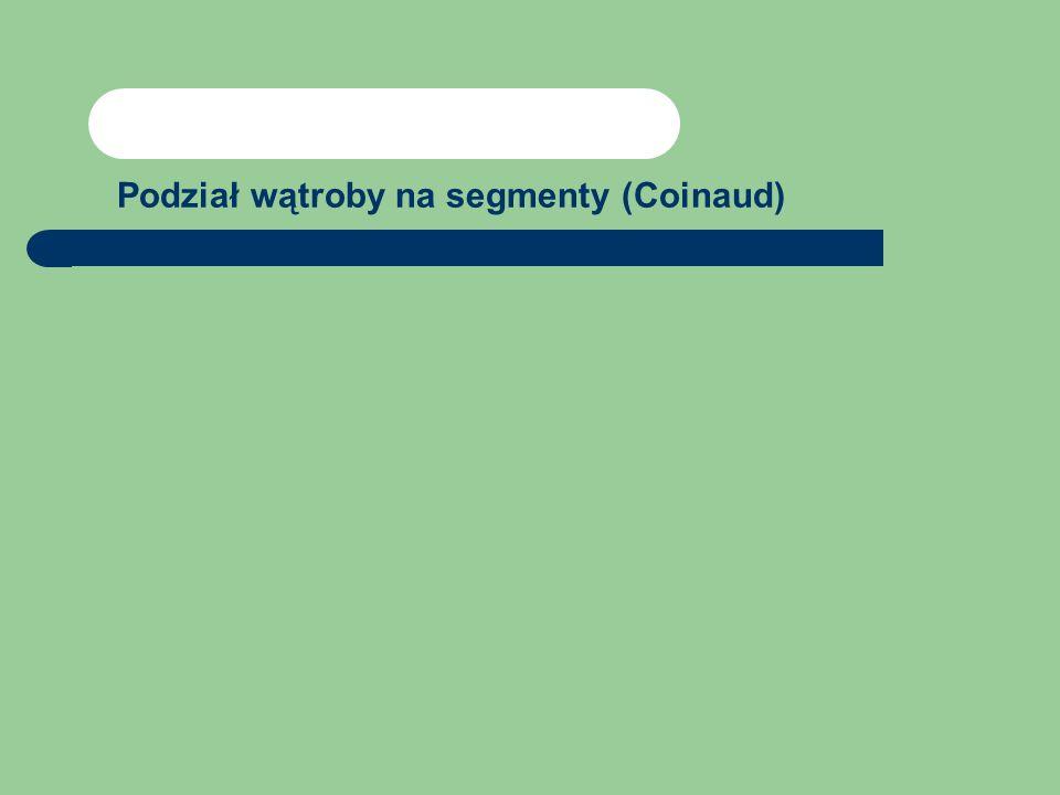 Podział wątroby na segmenty (Coinaud)
